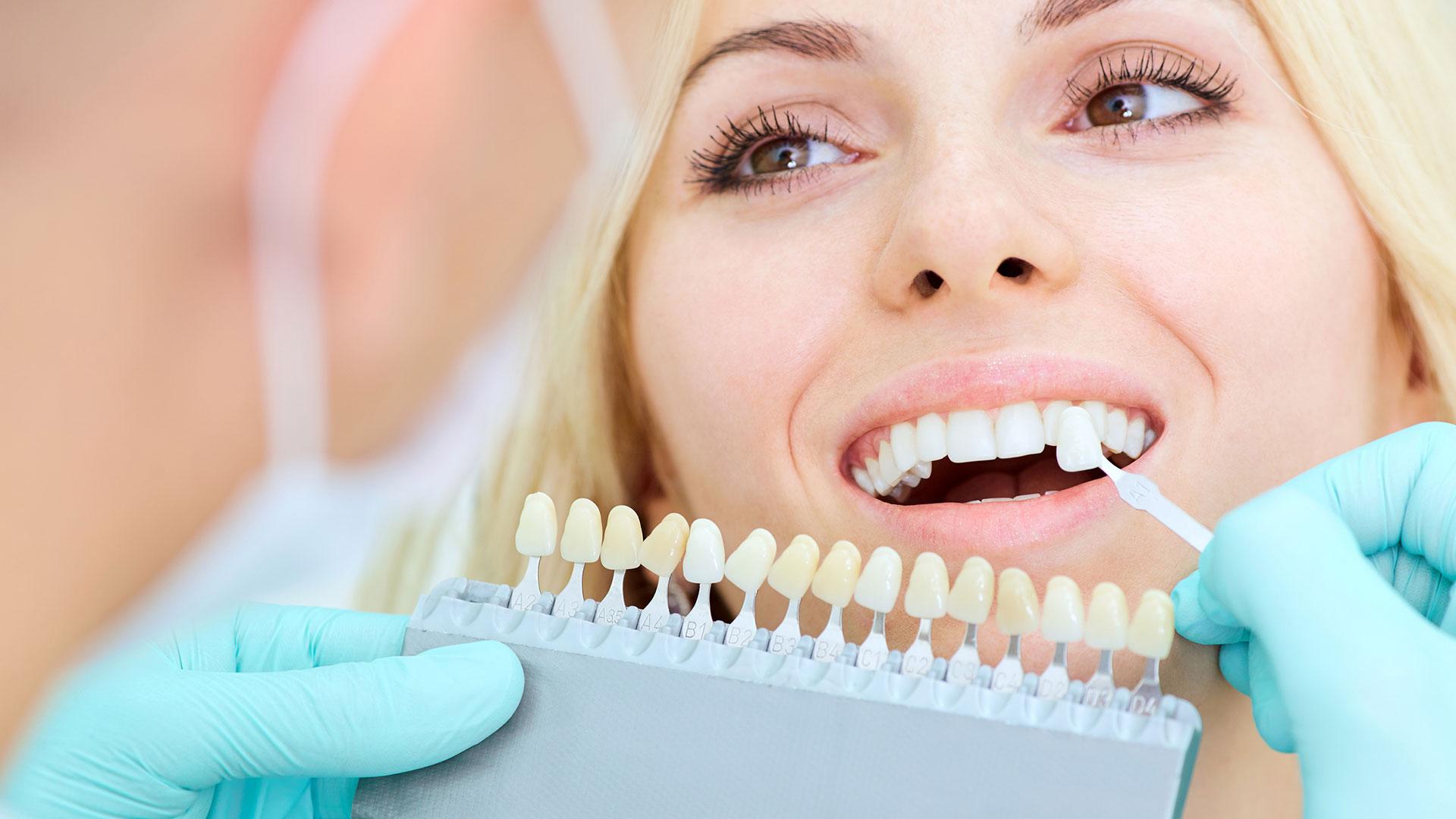 Dentalhandel Albert Plachel